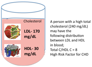 LDL and HDL in Blood