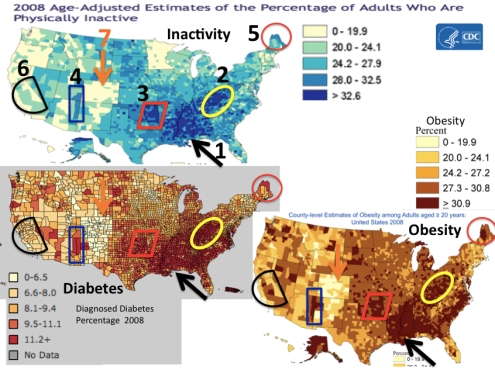 Maps of Inactivity, Obesity, Diabetes with selected areas
