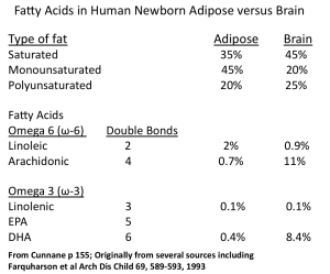 Table adipose vs brain